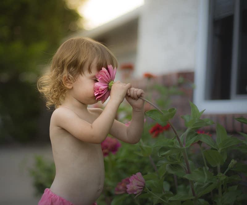 Niña pequeña rubia oliendo flor en jardin de casa